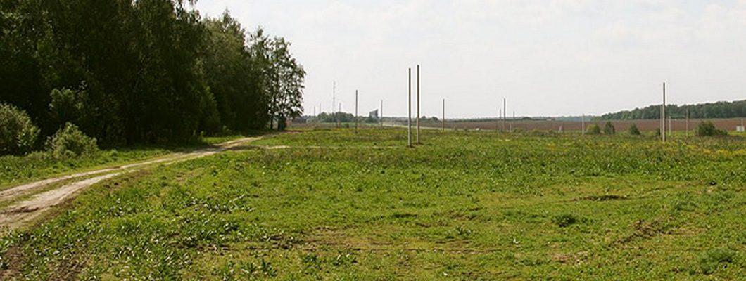 Земляничные луга