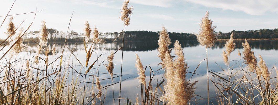 Инвестиционная ценность земельного участка у воды