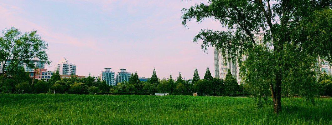 Земельный участок вблизи города Лобня – преимущества