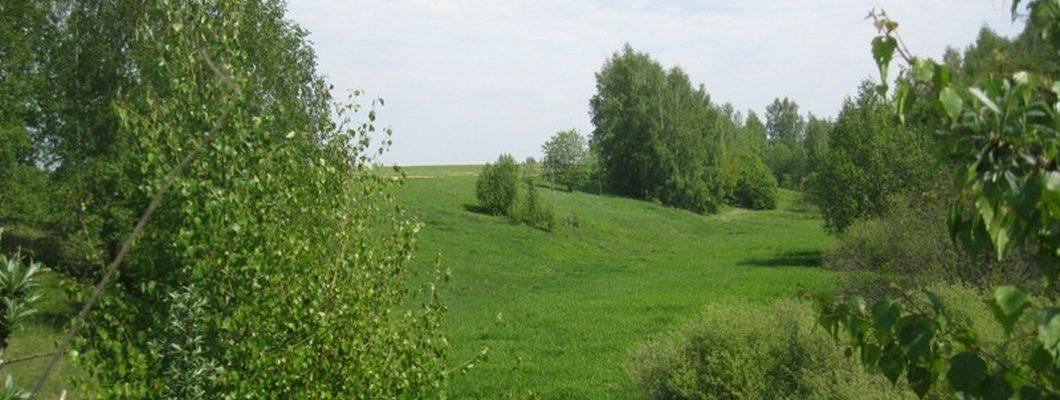 участок по Дмитровскому шоссе в деревне